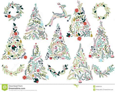 krismas tree to botni name floral or botanical trees stock vector image 46969126