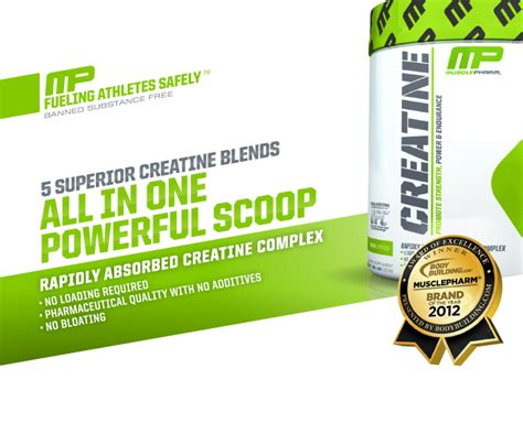 Mp Creatine 300 Gr musclepharm creatina 300gms creatinas protein