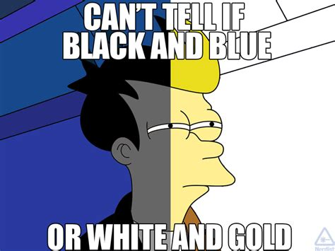 Can T Tell If Meme - can t tell if black and blue or white and gold memes