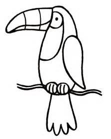 toucan coloring page toucan pictures cliparts co
