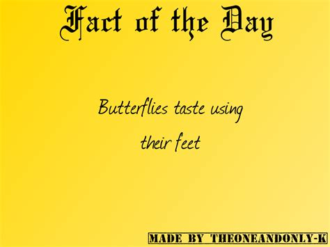 Fact Of The Day by Fact Of The Day 02 Dec 2012 By Theoneandonly K On Deviantart