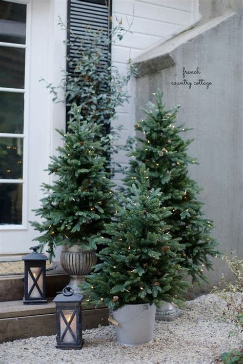 porch christmas trees home design