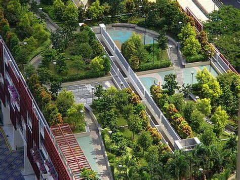 Huge Garden on Building Top Roof Image : Photos, Pictures, Ideas   High Resolution Images