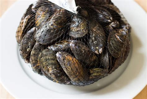 Dehydrated Mussels mussels 101 how to choose clean and cook mussels