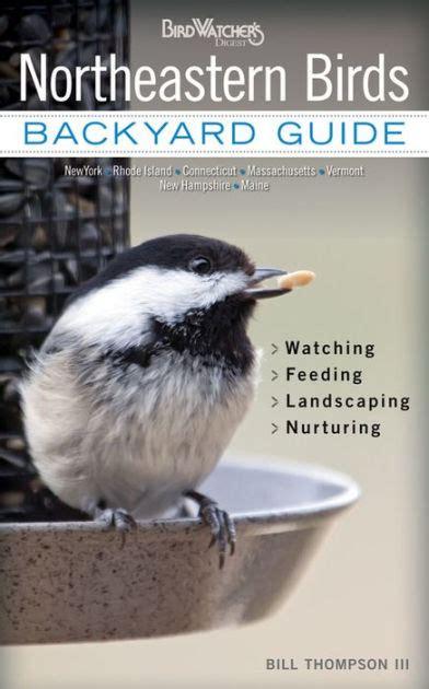 backyard birds northton ma northeastern birds backyard guide watching feeding