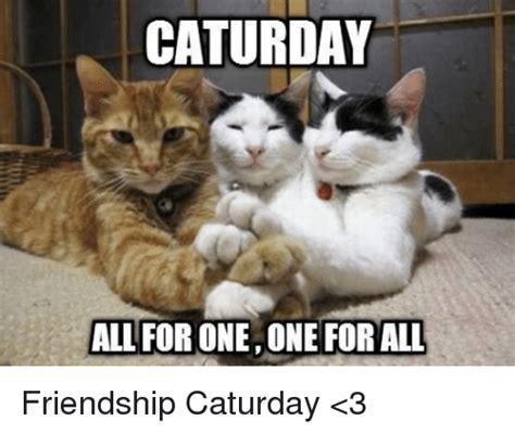 Caturday Meme - caturday