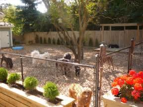 Dog Runner For Backyard » Home Design