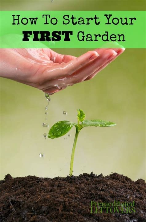 1093 Best T Shirts For Men Women Boys And Girls Images How To Start A Vegetable Garden For Dummies