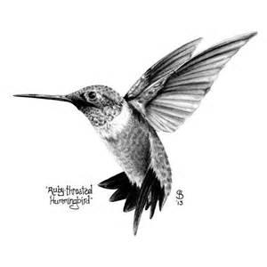 hummingbird drawing 25 best ideas about hummingbird black on hummingbird drawing bird sketch