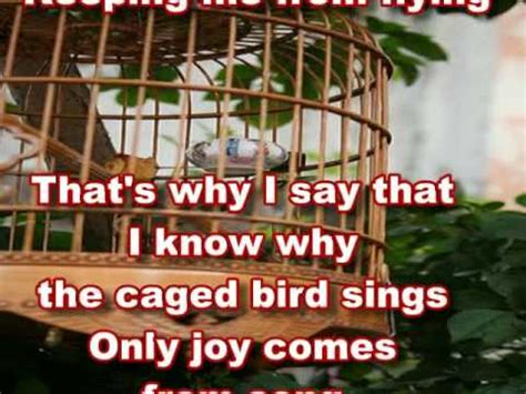 caged bird i know why the caged bird sings with lyrics