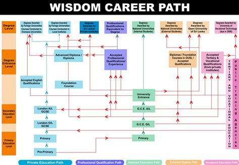 stron biz career path chart template