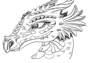 printable 21 dragon head coloring pages 4216 dragon coloring pages adults pictures