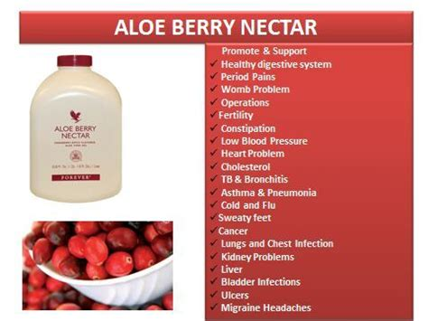 Aloe Berry Nectar Forever Living Product other supplements nutrition s best friend forever living aloe berry nectar was sold