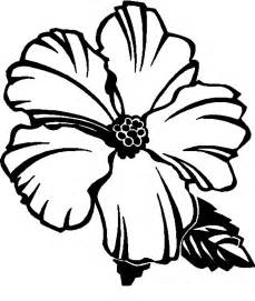 free coloring pages of hawaiian flowers free printable hibiscus coloring pages for