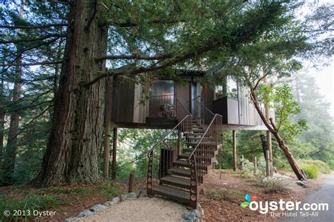 beautiful tree houses prime home design beautiful tree high living 9 beautiful tree house hotels oyster com