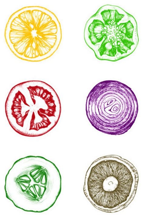 printing with fruit and vegetables fruit and vegetable print by poster guy contemporary