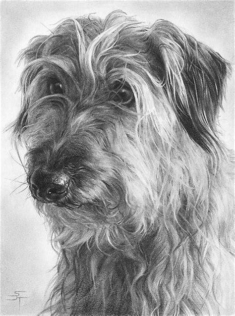 imagenes a lapiz de perritos 10 lindos dibujos a lapiz de perros imagenes de perros