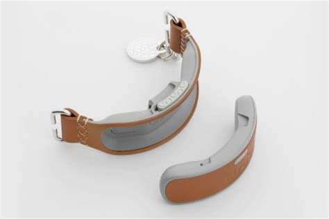 link akc smart collar introducing the link akc smart collar taking the bond between and owner to new