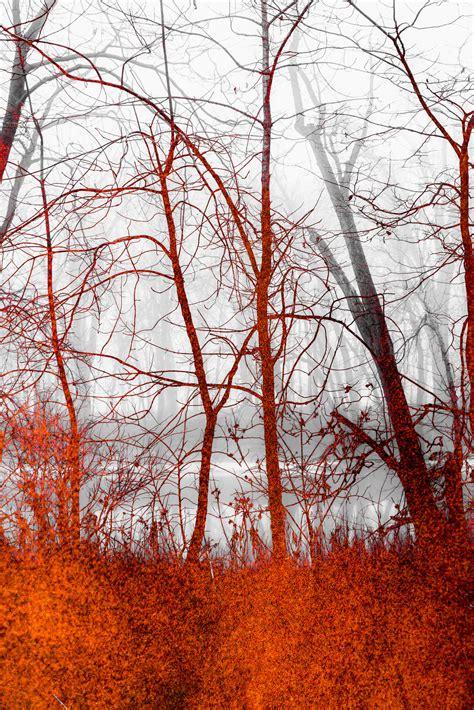 textures favourites by leokatana on deviantart textures favourites by wintersmagic on deviantart