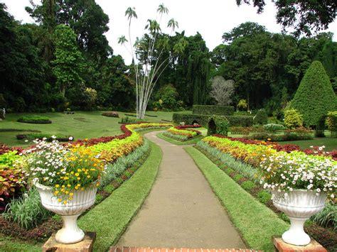 Pics Of Botanical Gardens Peradeniya Botanic Gardens