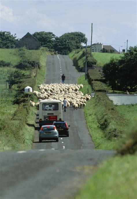 Autoversicherung Irland by Mietwagen Irland De