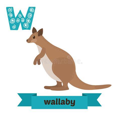 imagenes de animales con w wallaby letra de w alfabeto animal das crian 231 as bonitos no