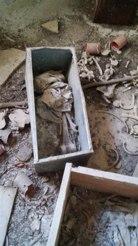 cimitero prima porta come trovare un defunto nel cimitero di foc 224 dov 232 il rispetto per i defunti