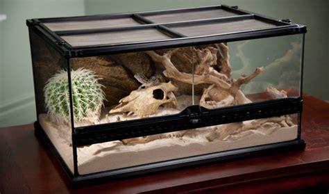 reptile l stand diy quelle est la diff 233 rence entre un rack et un terrarium