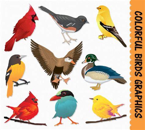 birds clipart birds clip graphics bird clipart cardinal duck sparrow