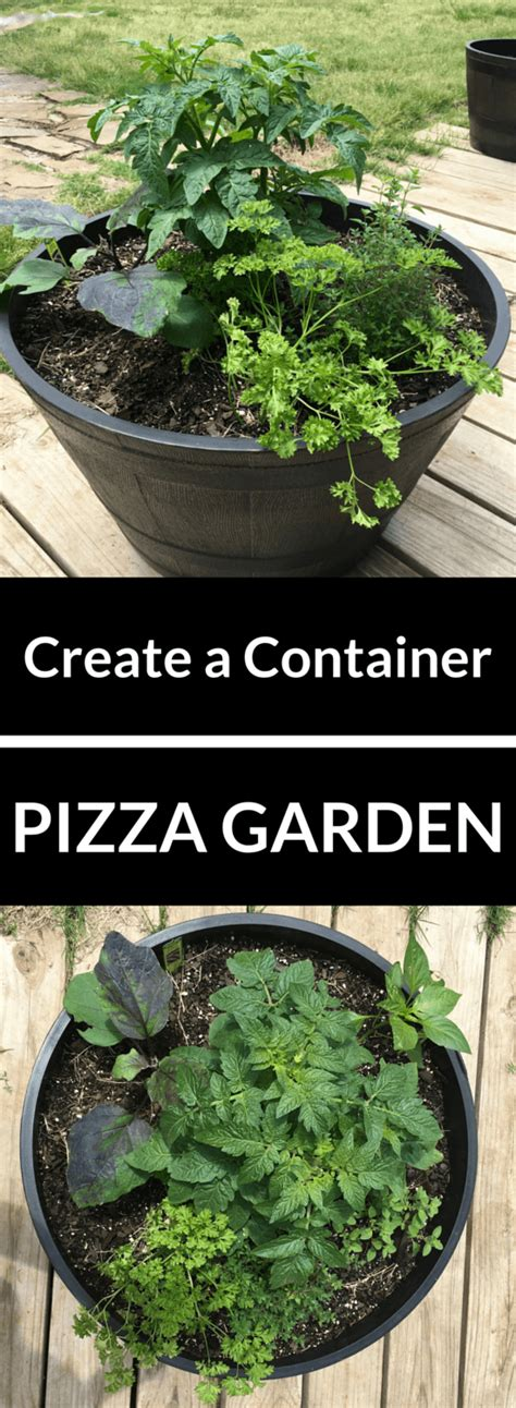 Pizza Garden by Container Pizza Garden Family Adventure
