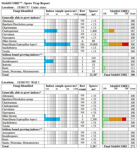Mold Testing Air Quality And Lab Results Interpretation Mold Report Template