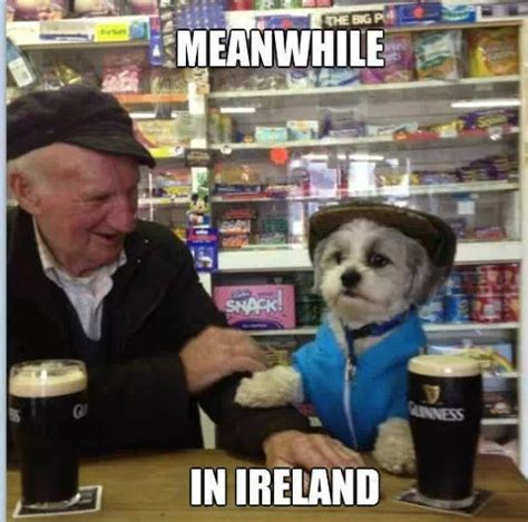 Ireland Memes - 11 memes only irish people will understand 183 the daily edge