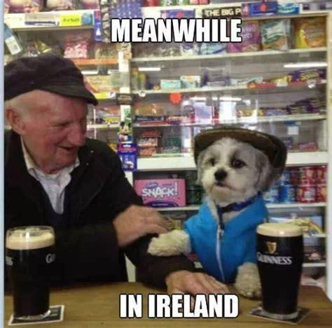 Irish Memes - related keywords suggestions for irish memes