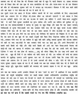 Neem Tree Essay by The Bitter October 2014