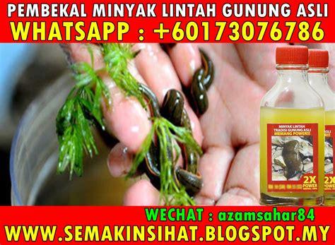 Minyak Lintah Di Padang rahsia suami dan isteri pembekal minyak lintah gunung no