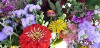 i fiori di bach sono efficaci come calcolare il peso forma