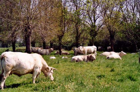 Chambre D Agriculture De La Loire