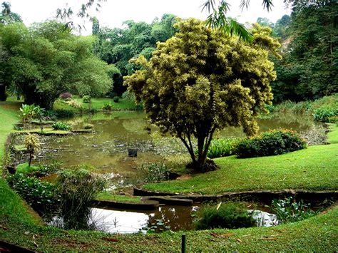 Peradeniya Botanic Gardens Botanical Garden Peradeniya