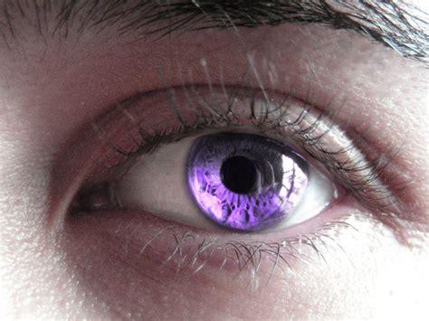 amethyst eye color best 25 violet ideas on real purple
