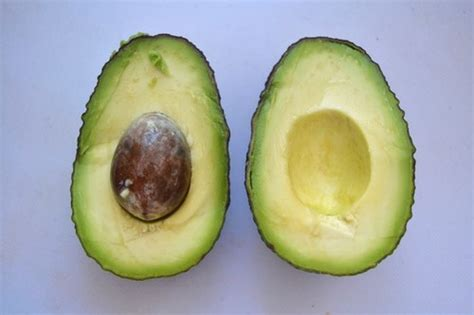 6 healthy fats to add to your diet 7 healthy fats to add to your diet food
