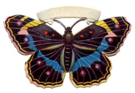vintage butterfly image spotted  graphics fairy
