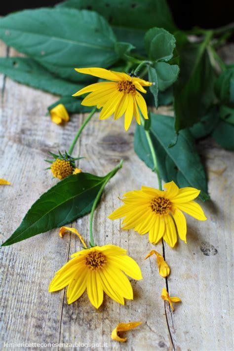 fiori topinambur mini strudel di topinambur il primo dono dell autunno