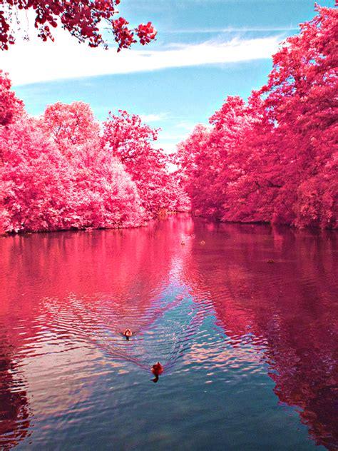 imagenes hermosas y coloridas 29 tumblr image 1159941 by nastty on favim com