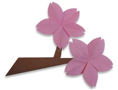 Cherry Blossom Origami - origami maniacs origami cherry blossom