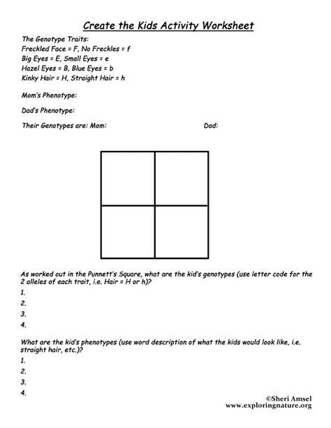 Punnett Square Worksheet by Punnett Square Worksheet With Answers