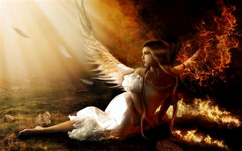 angel wallpaper  background image  id