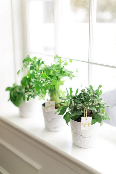 Indoor Herb Garden by 20 Indoor Herb Garden Ideas Home Design And Interior
