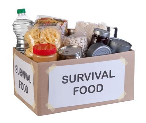 cooking light meal kits survival food kits lovetoknow