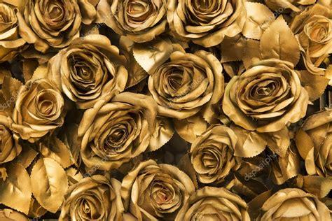 imagenes de rosas doradas fondo de rosas de tela dorada fotos de stock 77693656