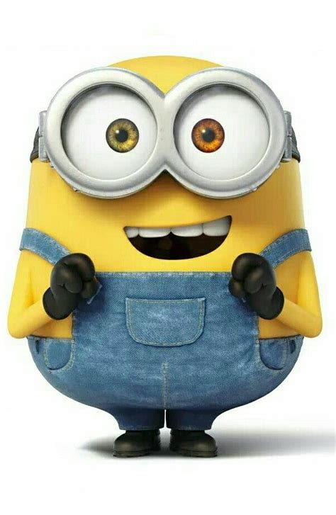 imagenes of minions minion bob minions pinterest bobs and minions